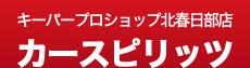 カースピリッツ l 埼玉県春日部市 l 車検・鈑金・塗装・修理